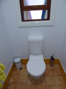 The original kids toilet after painting white